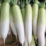 大根おろし保存期間と方法!冷凍で栄養や酵素は変わるの?効果は?